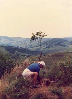 Sandor plantando uma árvore